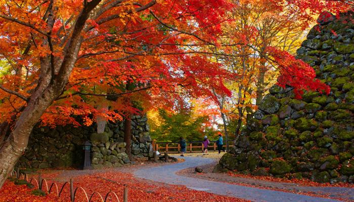 小諸城址 懐古園「紅葉まつり」
